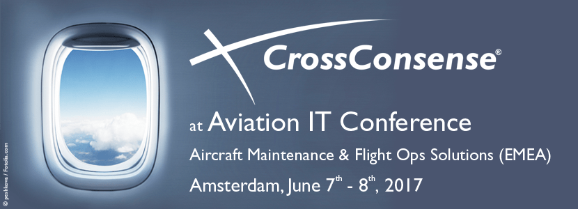 CrossConsense on IT Conference in June